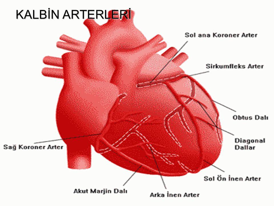 ARTERİAL SWİTCH OPERASYONU Atrial insizyon sütürlerle kapatıldıktan sonra, sağ ventrikülden çıkan aortik kök üzerinde koroner arterlerin çıkarıldığı yerlerde oluşan defektler perikardiyal doku yamaları ile rekonstrükte edilir.