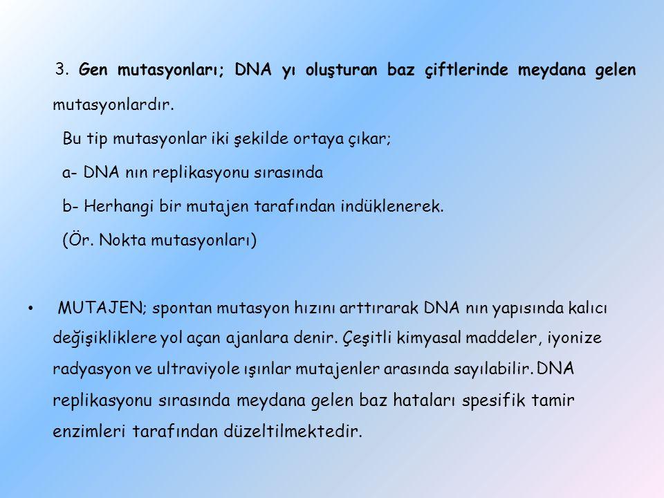 3. Gen mutasyonları; DNA yı oluşturan baz çiftlerinde meydana gelen mutasyonlardır. Bu tip mutasyonlar iki şekilde ortaya çıkar; a- DNA nın replikasyo