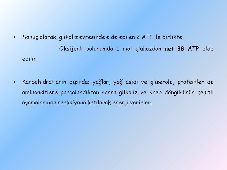 Sonuç olarak, glikoliz evresinde elde edilen 2 ATP ile birlikte, Oksijenli solunumda 1 mol glukozdan net 38 ATP elde edilir. Karbohidratların dışında;
