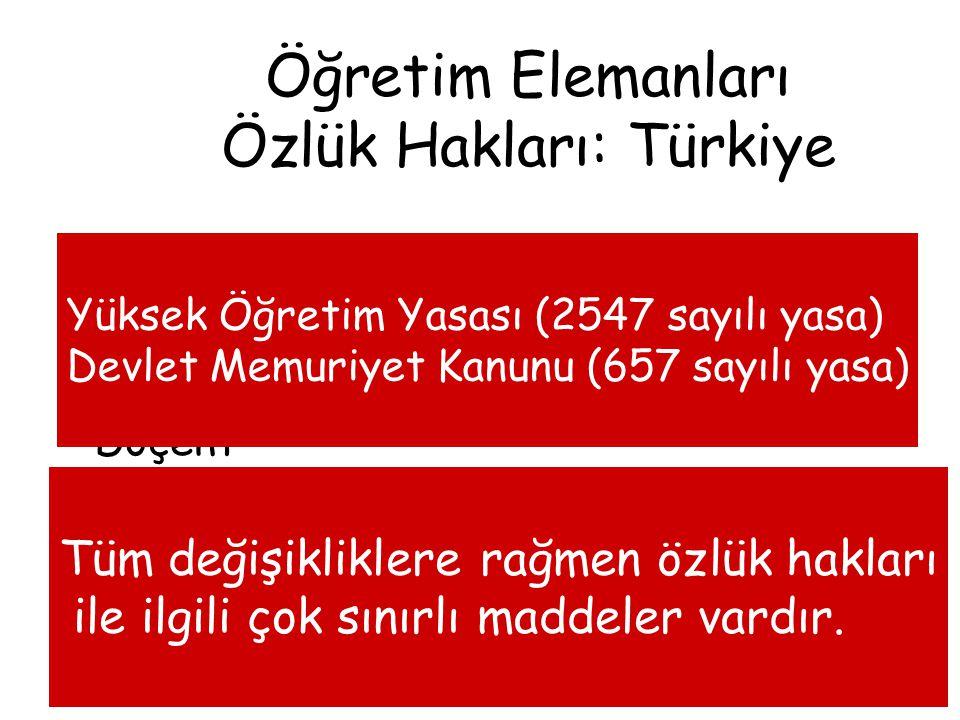 Araştırma Görevlisi Öğretim Görevlisi Yardımcı Doçent Doçent Profesör Öğretim Elemanları Özlük Hakları: Türkiye Yüksek Öğretim Yasası (2547 sayılı yas