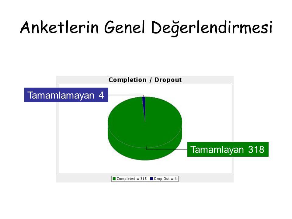 Anketlerin Genel Değerlendirmesi Tamamlayan 318 Tamamlamayan 4