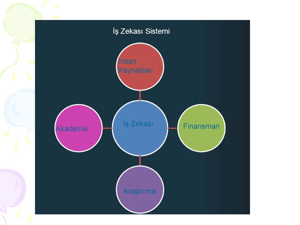İş Zekası Sistemi İnsan Kaynakları Akademik İş Zekası Finansman Araştırma