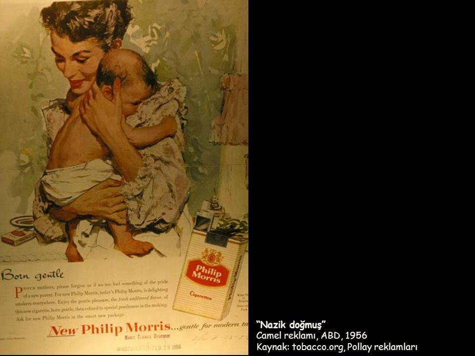"""""""Nazik doğmuş"""" Camel reklamı, ABD, 1956 Kaynak: tobacco.org, Pollay reklamları"""