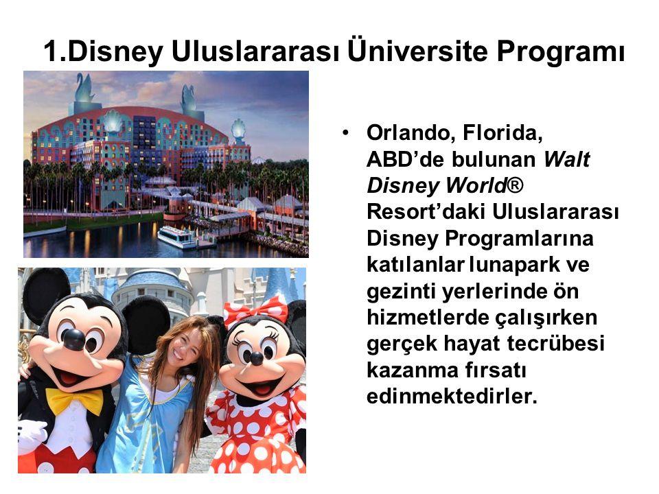 1.Disney Uluslararası Üniversite Programı Orlando, Florida, ABD'de bulunan Walt Disney World® Resort'daki Uluslararası Disney Programlarına katılanlar