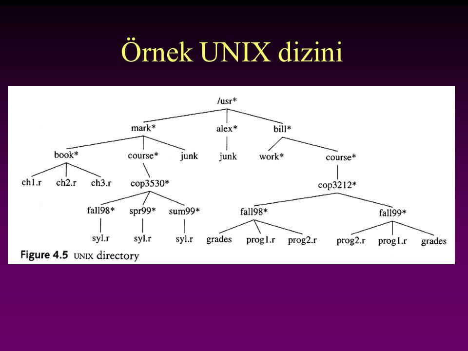 Örnek UNIX dizini