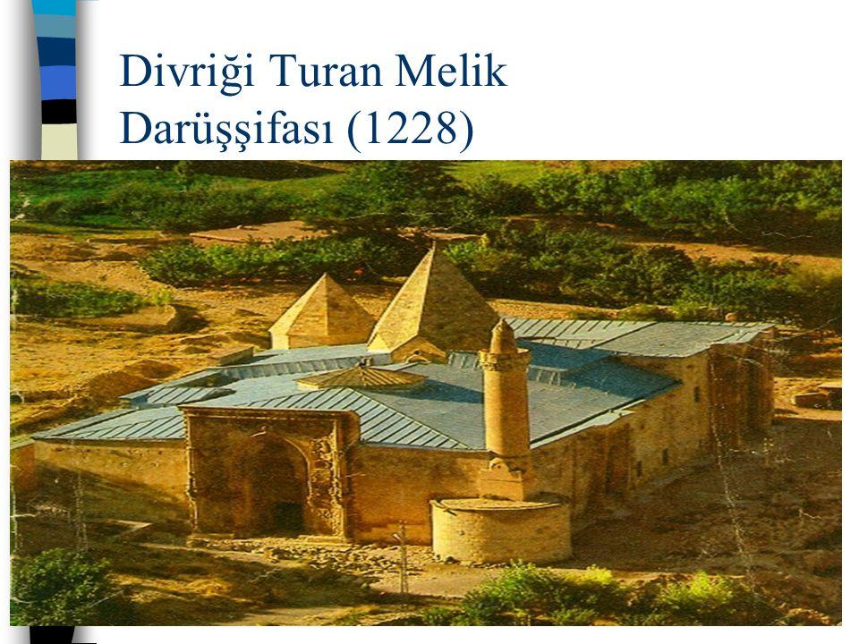 03.09.2014 2 Divriği Turan Melik Darüşşifası (1228)