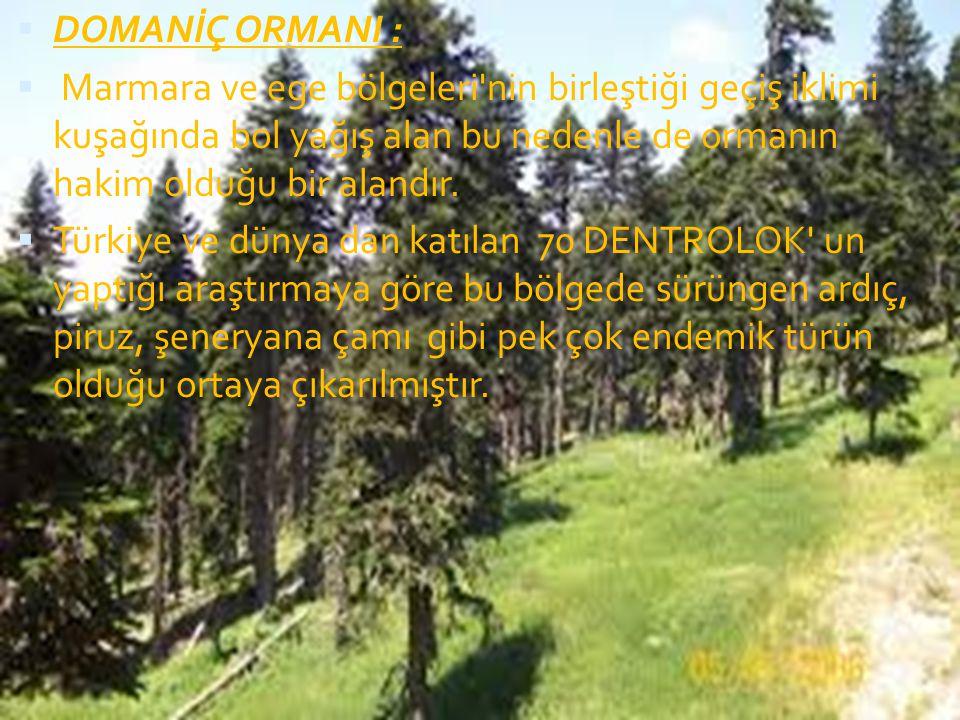  DOMANİÇ ORMANI :  Marmara ve ege bölgeleri'nin birleştiği geçiş iklimi kuşağında bol yağış alan bu nedenle de ormanın hakim olduğu bir alandır.  T