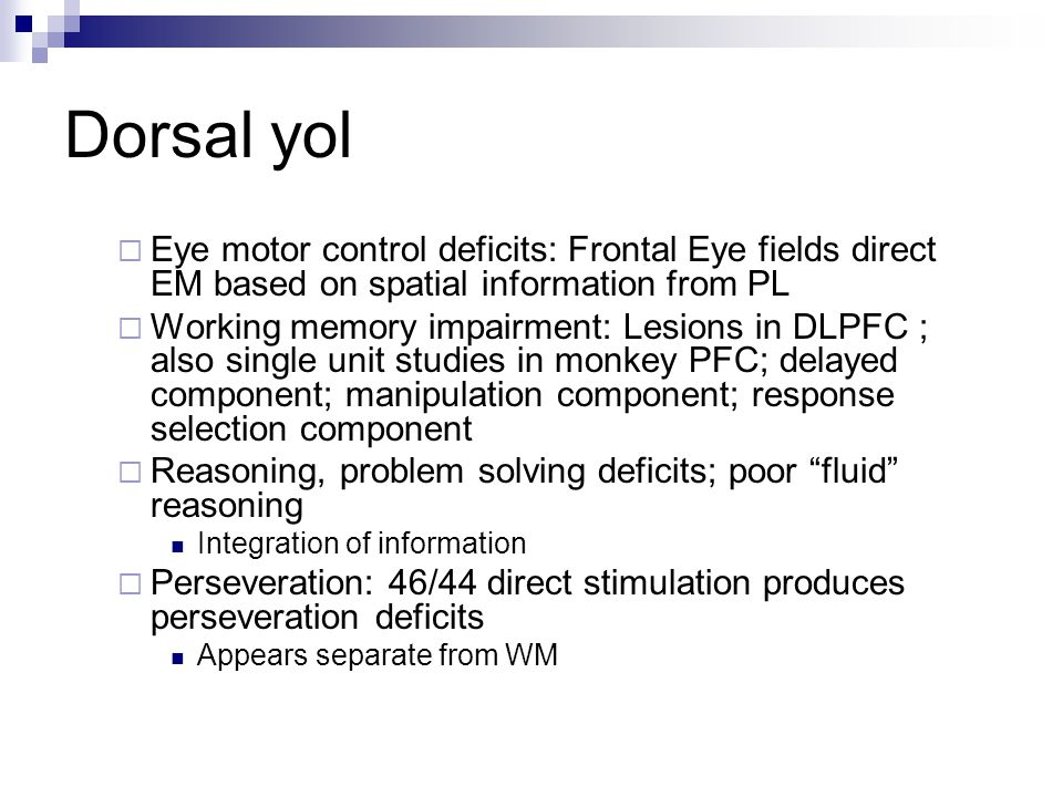 Dorsal yol  Eye motor control deficits: Frontal Eye fields direct EM based on spatial information from PL  Working memory impairment: Lesions in DLP