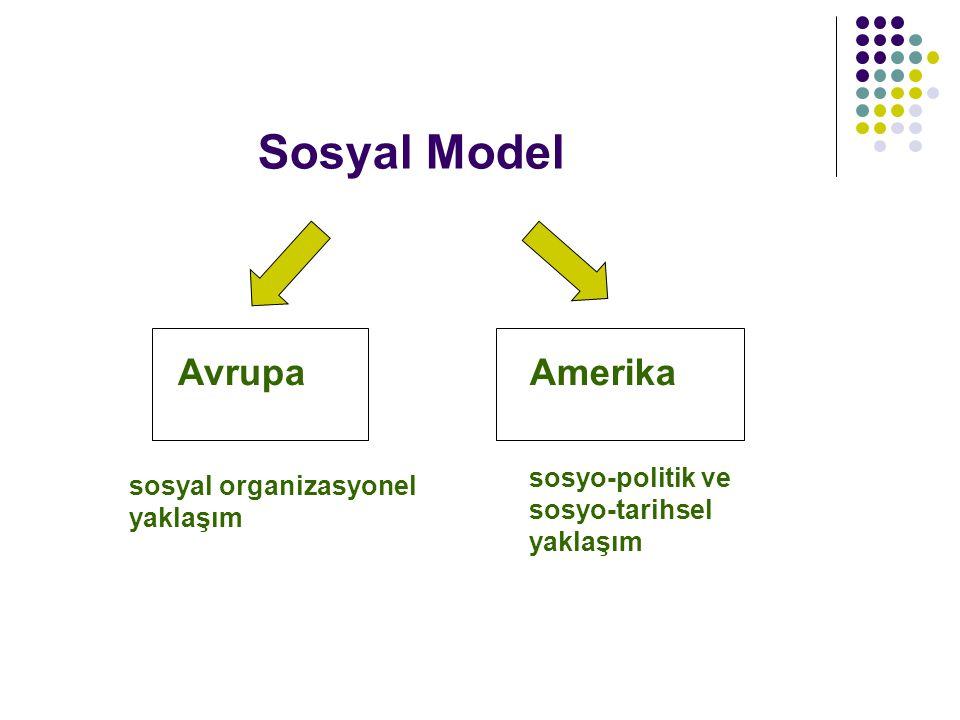 Sosyal Model AvrupaAmerika sosyal organizasyonel yaklaşım sosyo-politik ve sosyo-tarihsel yaklaşım