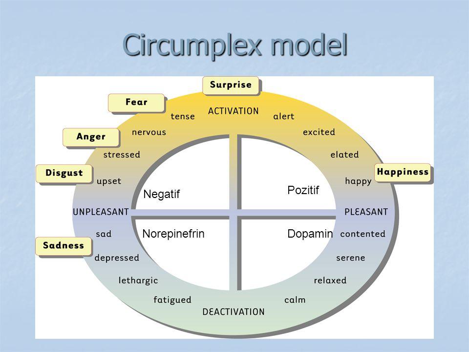 Circumplex model Pozitif Negatif NorepinefrinDopamin