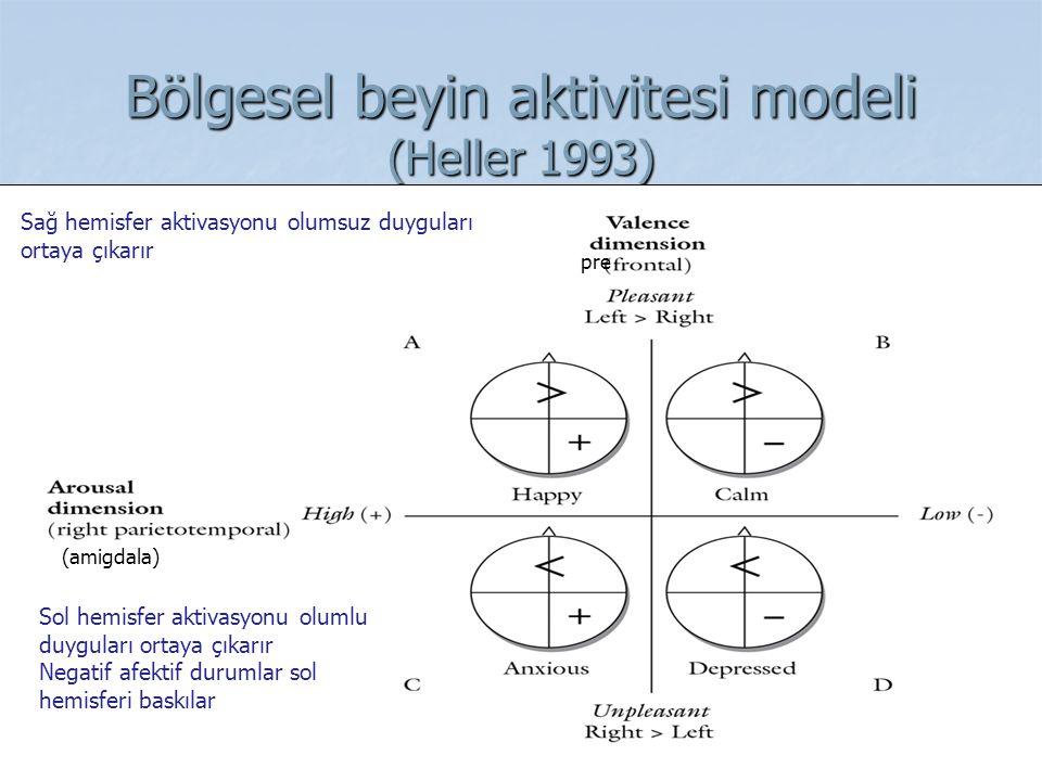Bölgesel beyin aktivitesi modeli (Heller 1993) (amigdala) pre Sağ hemisfer aktivasyonu olumsuz duyguları ortaya çıkarır Sol hemisfer aktivasyonu oluml