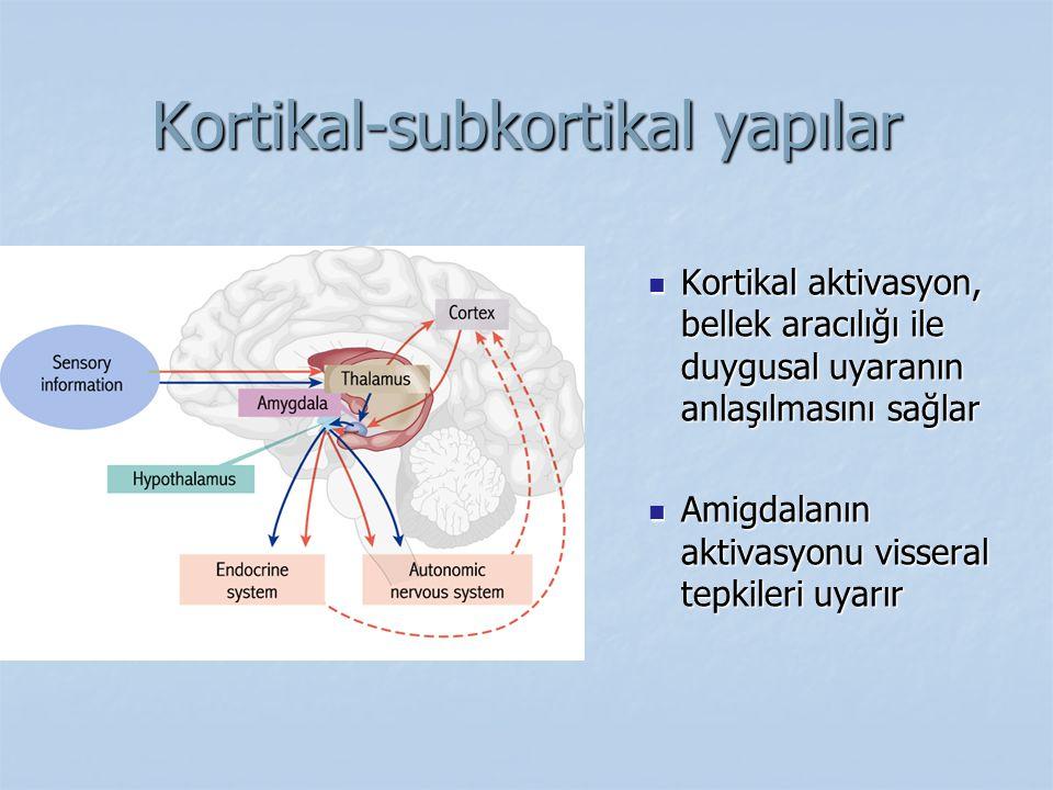 Kortikal-subkortikal yapılar Kortikal aktivasyon, bellek aracılığı ile duygusal uyaranın anlaşılmasını sağlar Amigdalanın aktivasyonu visseral tepkile