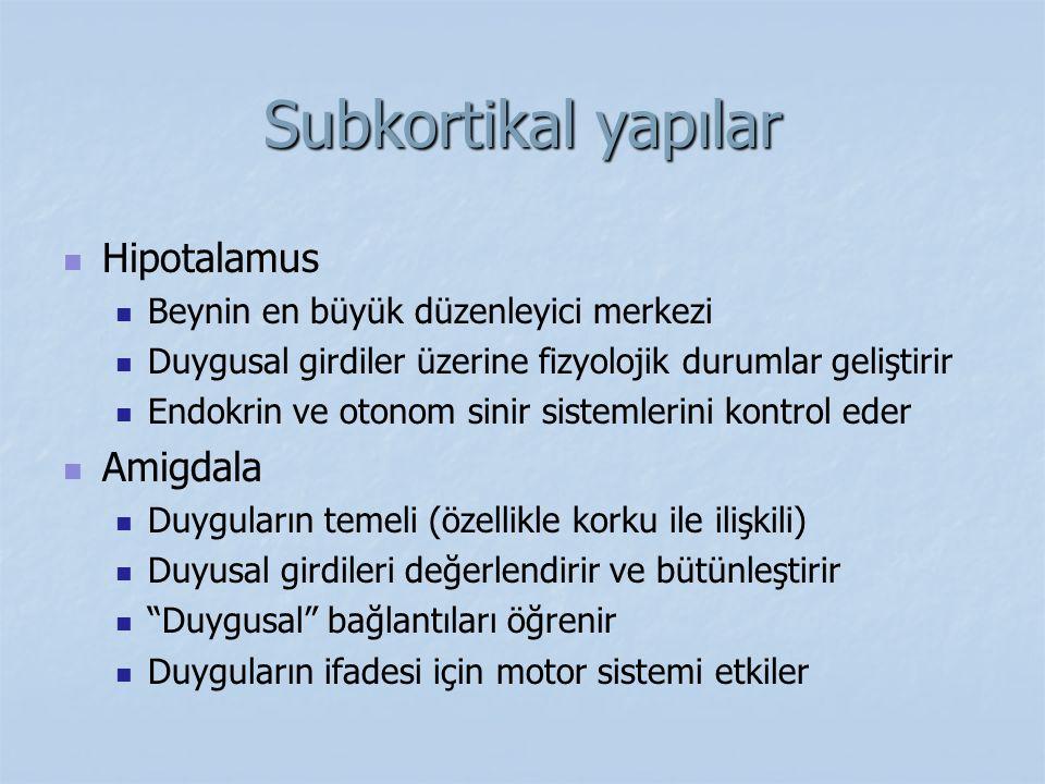 Subkortikal yapılar Hipotalamus Beynin en büyük düzenleyici merkezi Duygusal girdiler üzerine fizyolojik durumlar geliştirir Endokrin ve otonom sinir