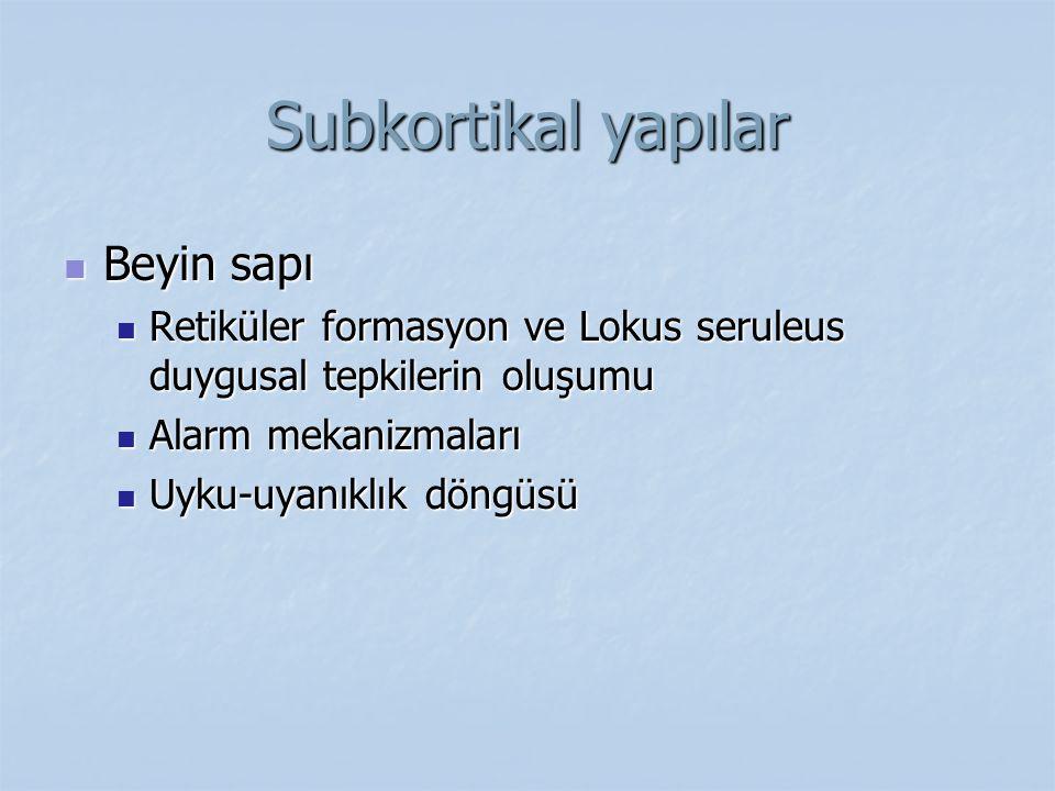 Subkortikal yapılar Beyin sapı Beyin sapı Retiküler formasyon ve Lokus seruleus duygusal tepkilerin oluşumu Retiküler formasyon ve Lokus seruleus duyg