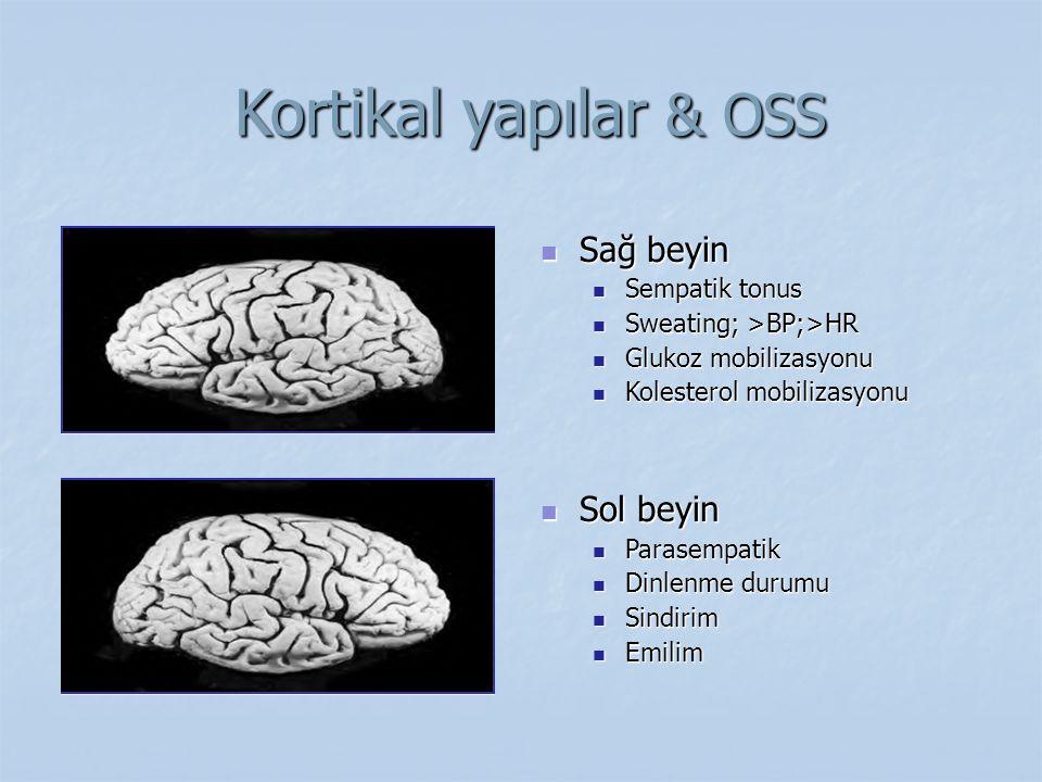 Kortikal yapılar & OSS Kortikal yapılar & OSS Sağ beyin Sağ beyin Sempatik tonus Sempatik tonus Sweating; >BP;>HR Sweating; >BP;>HR Glukoz mobilizasyo