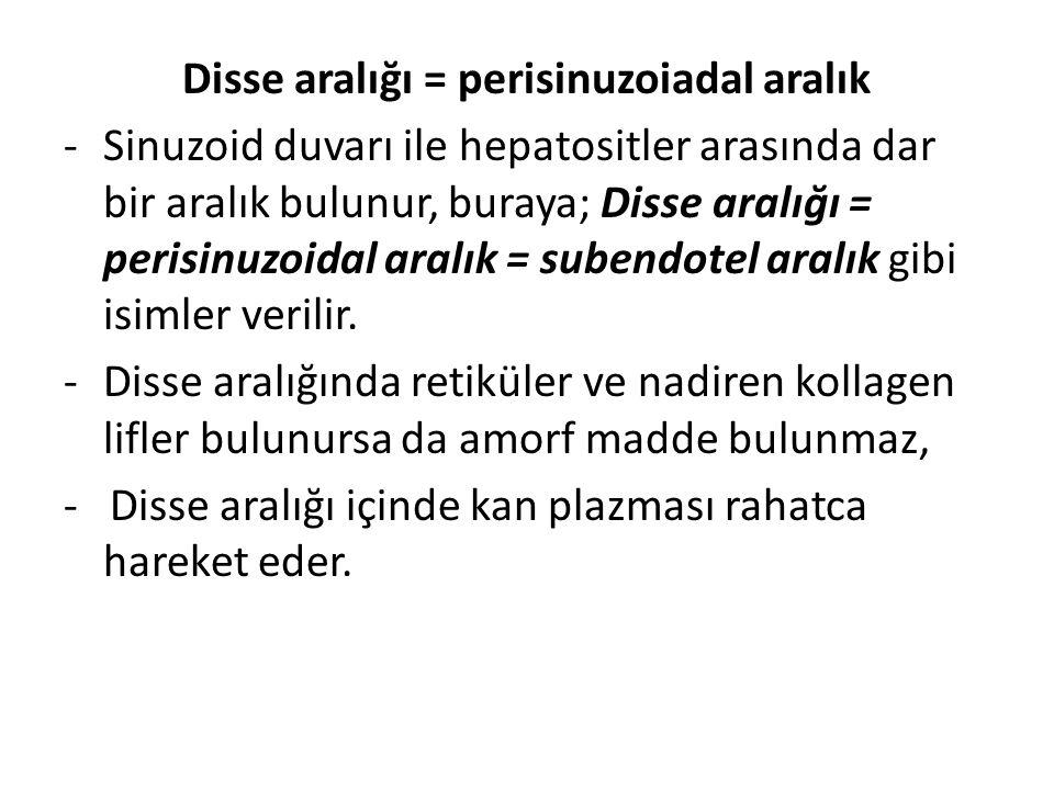 Disse aralığı = perisinuzoiadal aralık -Sinuzoid duvarı ile hepatositler arasında dar bir aralık bulunur, buraya; Disse aralığı = perisinuzoidal aralı