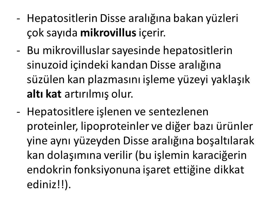 -Hepatositlerin Disse aralığına bakan yüzleri çok sayıda mikrovillus içerir. -Bu mikrovilluslar sayesinde hepatositlerin sinuzoid içindeki kandan Diss