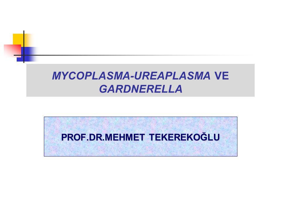 MYCOPLASMA-UREAPLASMA VE GARDNERELLA PROF.DR.MEHMET TEKEREKOĞLU
