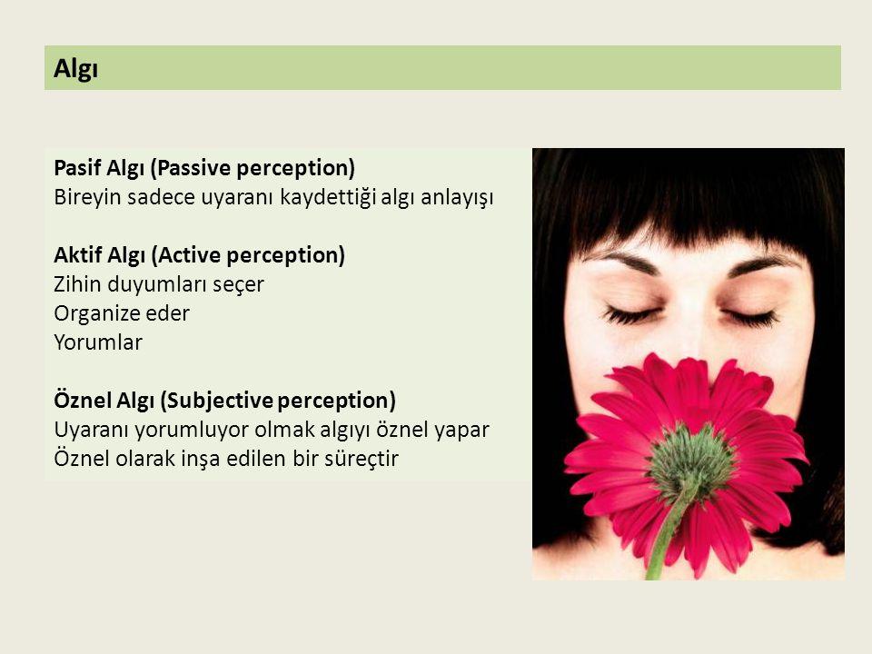 Pasif Algı (Passive perception) Bireyin sadece uyaranı kaydettiği algı anlayışı Aktif Algı (Active perception) Zihin duyumları seçer Organize eder Yor