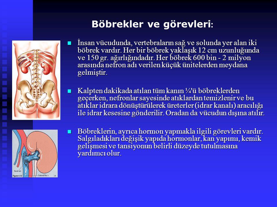 Böbrekler ve görevleri : İnsan vücudunda, vertebraların sağ ve solunda yer alan iki böbrek vardır. Her bir böbrek yaklaşık 12 cm uzunluğunda ve 150 gr
