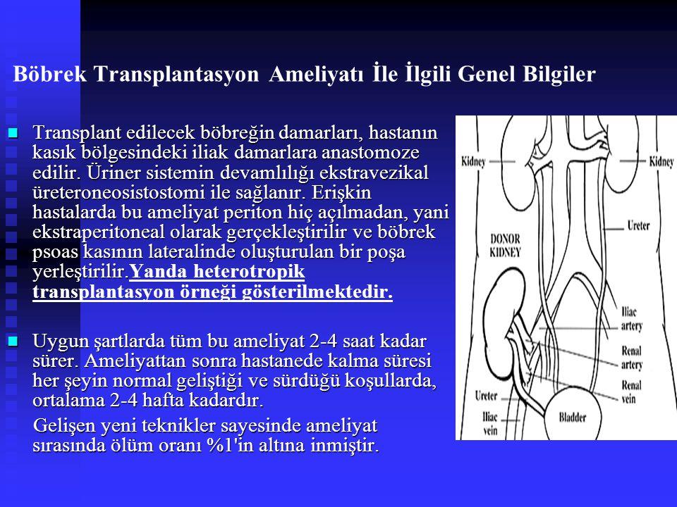 Böbrek Transplantasyon Ameliyatı İle İlgili Genel Bilgiler Transplant edilecek böbreğin damarları, hastanın kasık bölgesindeki iliak damarlara anastomoze edilir.