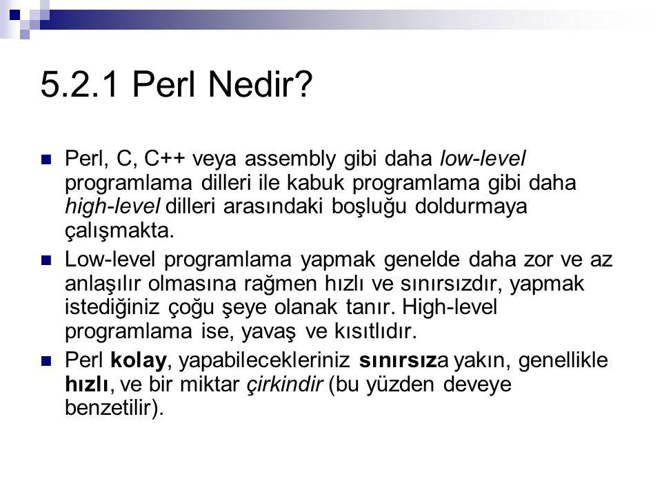 5.2.1 Perl Nedir? Perl, C, C++ veya assembly gibi daha low-level programlama dilleri ile kabuk programlama gibi daha high-level dilleri arasındaki boş