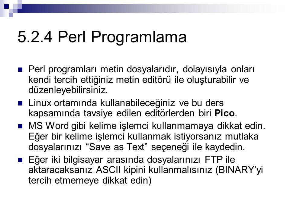 5.2.4 Perl Programlama Perl programları metin dosyalarıdır, dolayısıyla onları kendi tercih ettiğiniz metin editörü ile oluşturabilir ve düzenleyebili