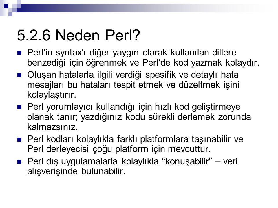 5.2.6 Neden Perl? Perl'in syntax'ı diğer yaygın olarak kullanılan dillere benzediği için öğrenmek ve Perl'de kod yazmak kolaydır. Oluşan hatalarla ilg