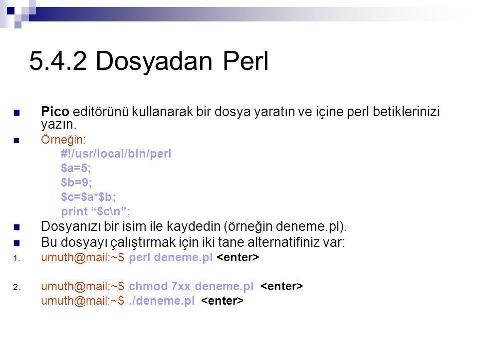 5.4.2 Dosyadan Perl Pico editörünü kullanarak bir dosya yaratın ve içine perl betiklerinizi yazın. Örneğin: #!/usr/local/bin/perl $a=5; $b=9; $c=$a*$b