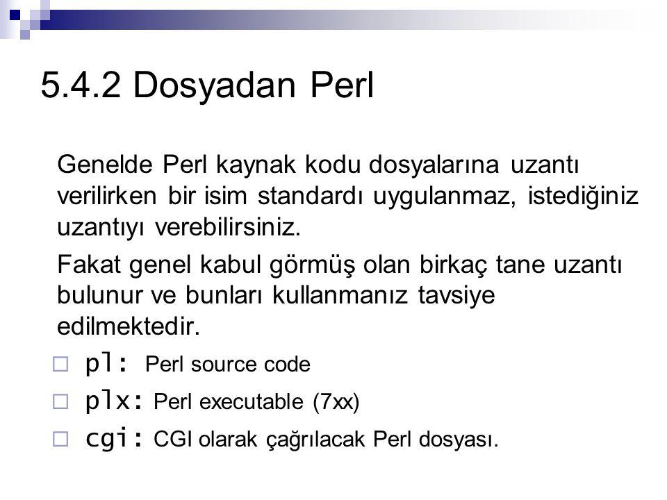 5.4.2 Dosyadan Perl Genelde Perl kaynak kodu dosyalarına uzantı verilirken bir isim standardı uygulanmaz, istediğiniz uzantıyı verebilirsiniz. Fakat g