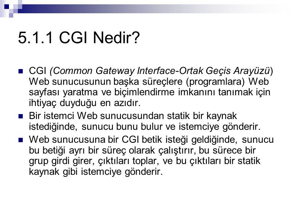 5.1.1 CGI Nedir? CGI (Common Gateway Interface-Ortak Geçis Arayüzü) Web sunucusunun başka süreçlere (programlara) Web sayfası yaratma ve biçimlendirme