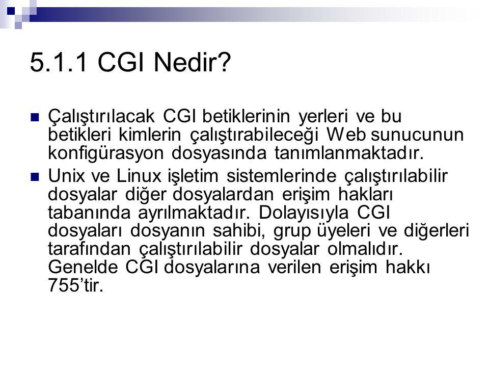 Çalıştırılacak CGI betiklerinin yerleri ve bu betikleri kimlerin çalıştırabileceği Web sunucunun konfigürasyon dosyasında tanımlanmaktadır. Unix ve Li