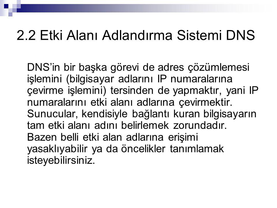 2.2 Etki Alanı Adlandırma Sistemi DNS DNS'in bir başka görevi de adres çözümlemesi işlemini (bilgisayar adlarını IP numaralarına çevirme işlemini) ter