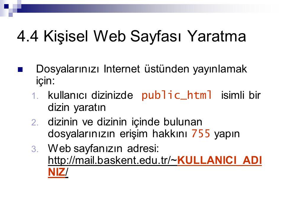 4.4 Kişisel Web Sayfası Yaratma Dosyalarınızı Internet üstünden yayınlamak için: 1.