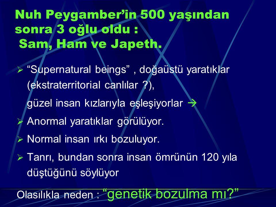 """Nuh Peygamber'in 500 yaşından sonra 3 oğlu oldu : Sam, Ham ve Japeth.  """"Supernatural beings"""", doğaüstü yaratıklar (ekstraterritorial canlılar ?), güz"""
