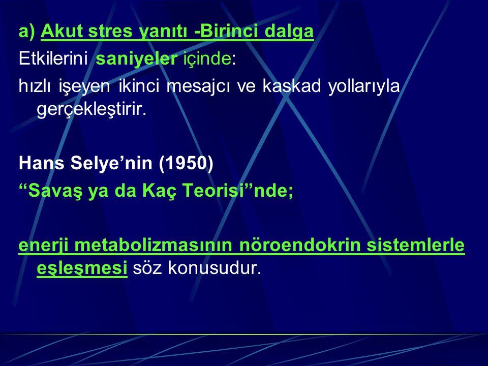 a) Akut stres yanıtı -Birinci dalga Etkilerini saniyeler içinde: hızlı işeyen ikinci mesajcı ve kaskad yollarıyla gerçekleştirir. Hans Selye'nin (1950