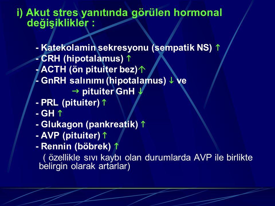 i) Akut stres yanıtında görülen hormonal değişiklikler : - Katekolamin sekresyonu (sempatik NS)  - CRH (hipotalamus)  - ACTH (ön pituiter bez)  - G
