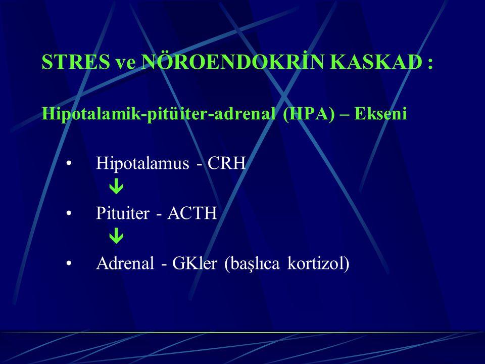 STRES ve NÖROENDOKRİN KASKAD : Hipotalamik-pitüiter-adrenal (HPA) – Ekseni Hipotalamus - CRH  Pituiter - ACTH  Adrenal - GKler (başlıca kortizol)