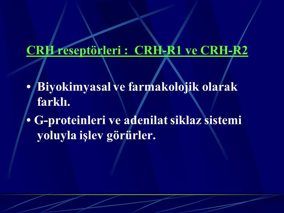 CRH reseptörleri : CRH-R1 ve CRH-R2 Biyokimyasal ve farmakolojik olarak farklı. G-proteinleri ve adenilat siklaz sistemi yoluyla işlev görürler.