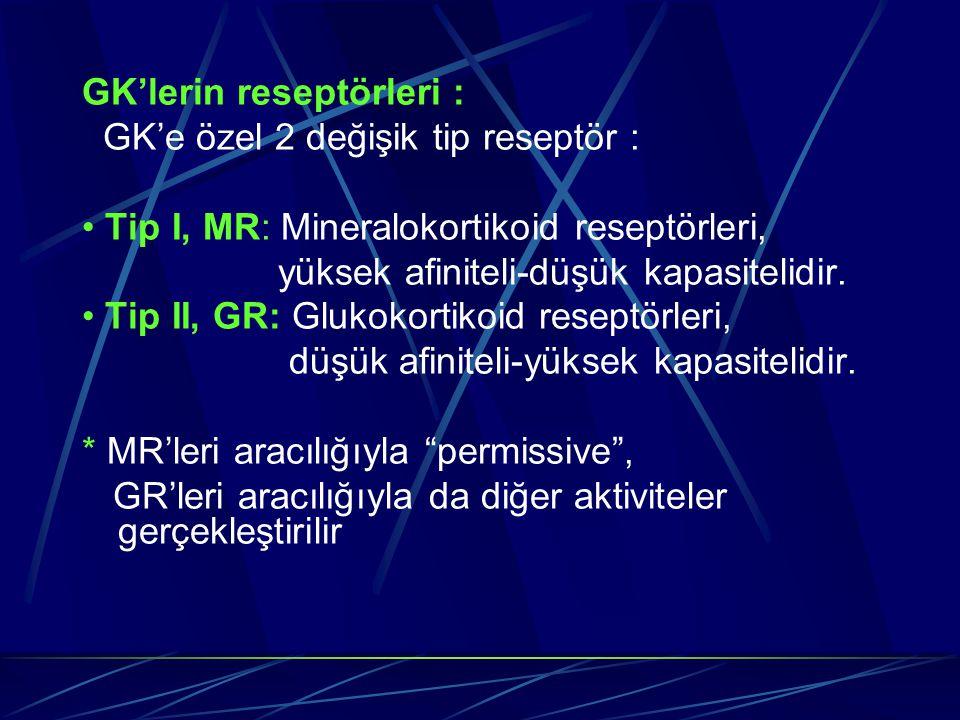 GK'lerin reseptörleri : GK'e özel 2 değişik tip reseptör : Tip I, MR: Mineralokortikoid reseptörleri, yüksek afiniteli-düşük kapasitelidir. Tip II, GR