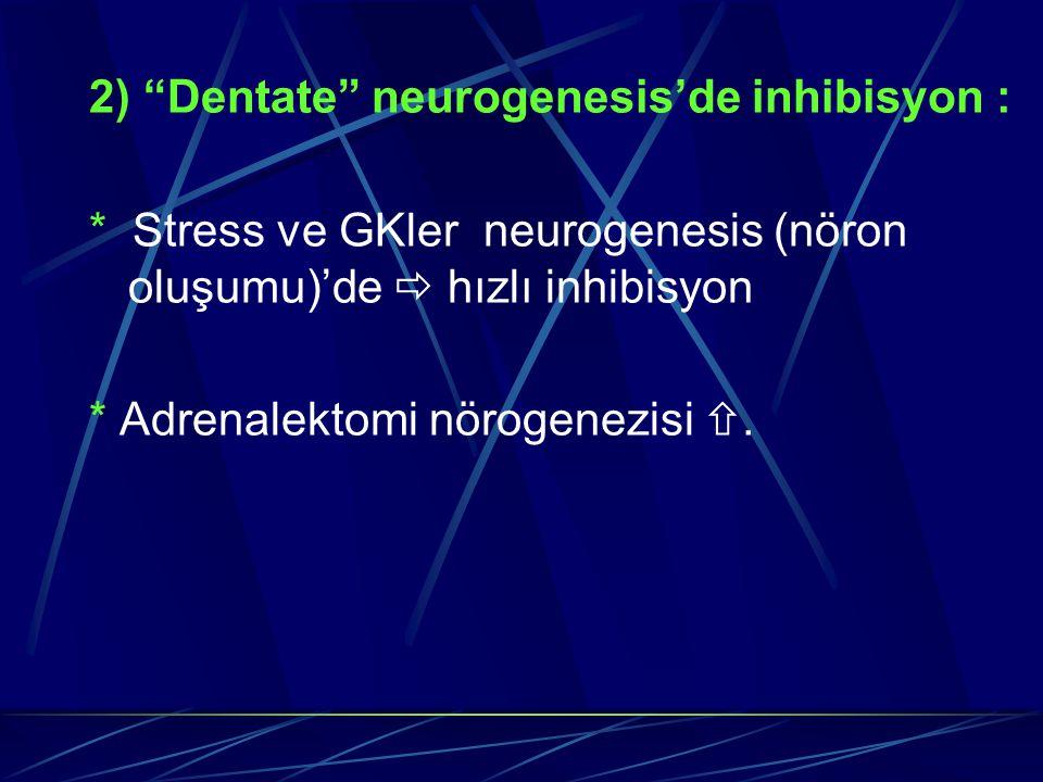 """2) """"Dentate"""" neurogenesis'de inhibisyon : * Stress ve GKler neurogenesis (nöron oluşumu)'de  hızlı inhibisyon * Adrenalektomi nörogenezisi ."""