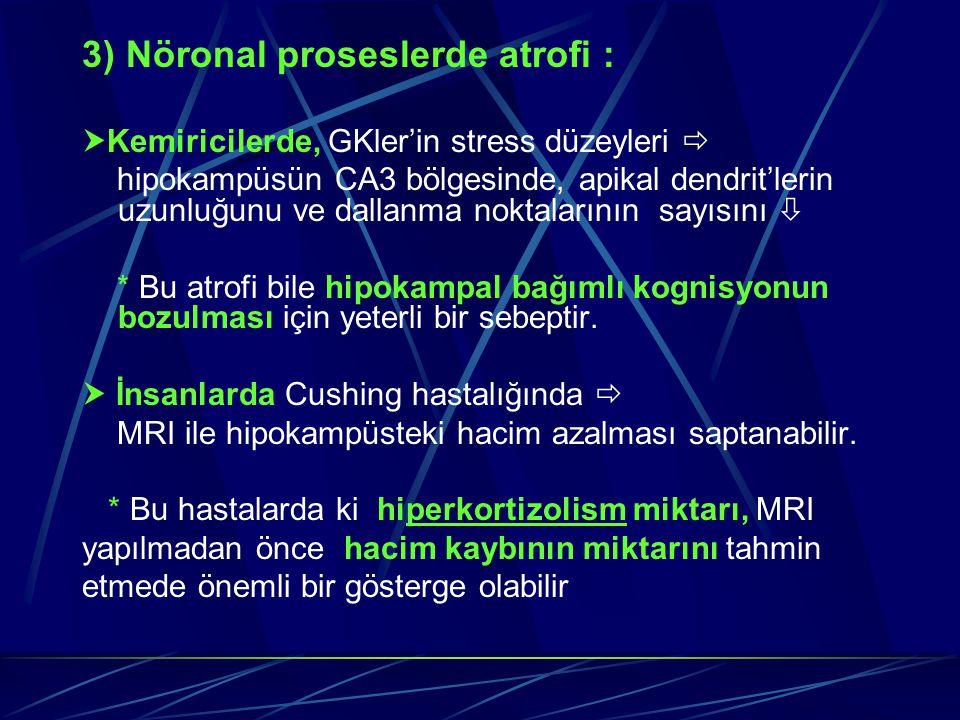 3) Nöronal proseslerde atrofi :  Kemiricilerde, GKler'in stress düzeyleri  hipokampüsün CA3 bölgesinde, apikal dendrit'lerin uzunluğunu ve dallanma