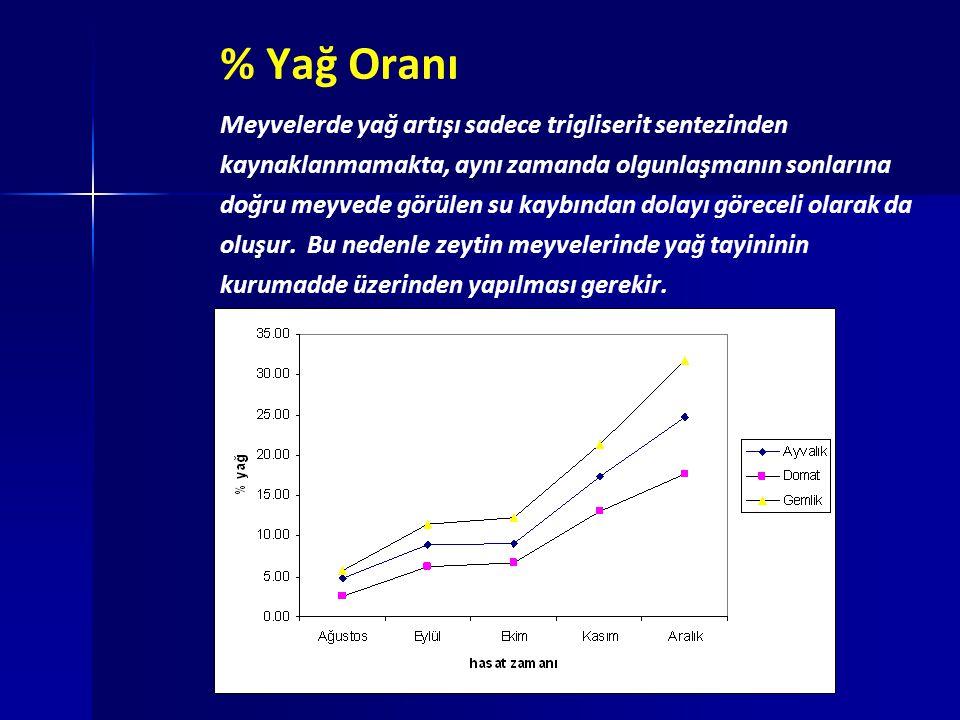 % Yağ Oranı Meyvelerde yağ artışı sadece trigliserit sentezinden kaynaklanmamakta, aynı zamanda olgunlaşmanın sonlarına doğru meyvede görülen su kaybı