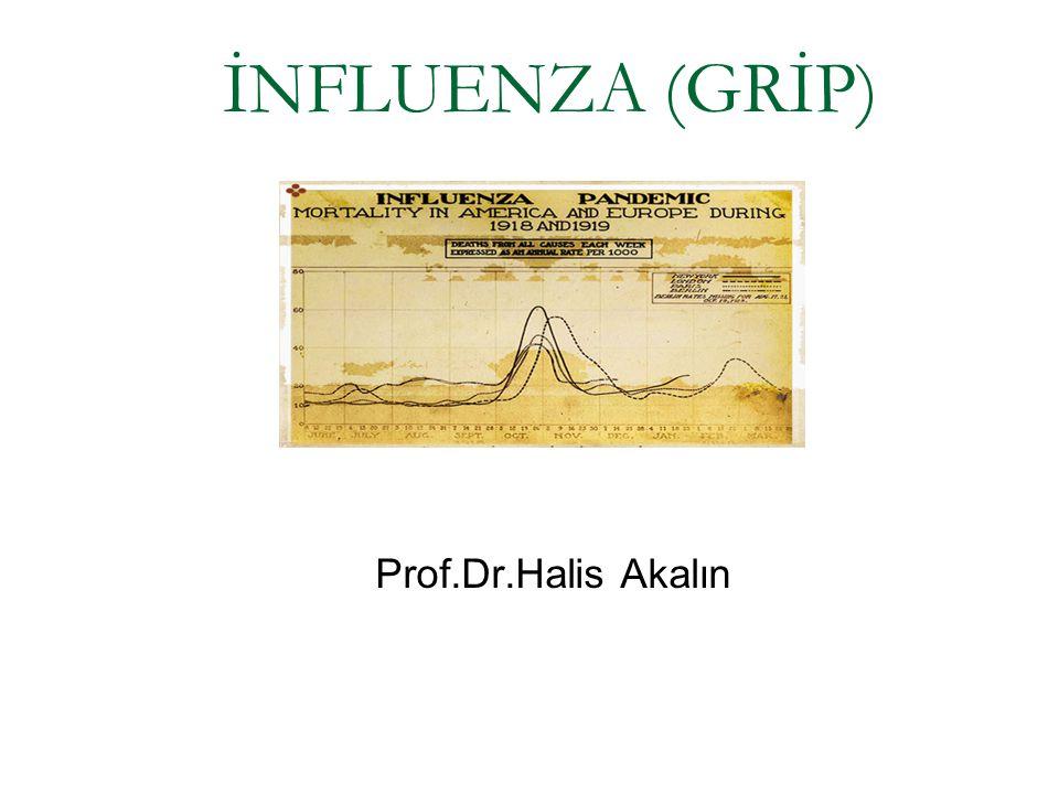 İNFLUENZA (GRİP) Prof.Dr.Halis Akalın