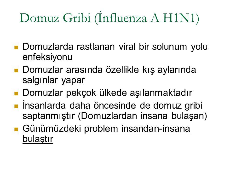 Domuz Gribi (İnfluenza A H1N1) Domuzlarda rastlanan viral bir solunum yolu enfeksiyonu Domuzlar arasında özellikle kış aylarında salgınlar yapar Domuz