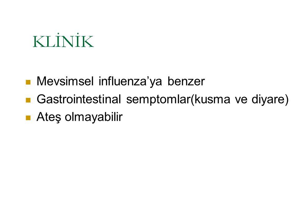 KLİNİK Mevsimsel influenza'ya benzer Gastrointestinal semptomlar(kusma ve diyare) Ateş olmayabilir
