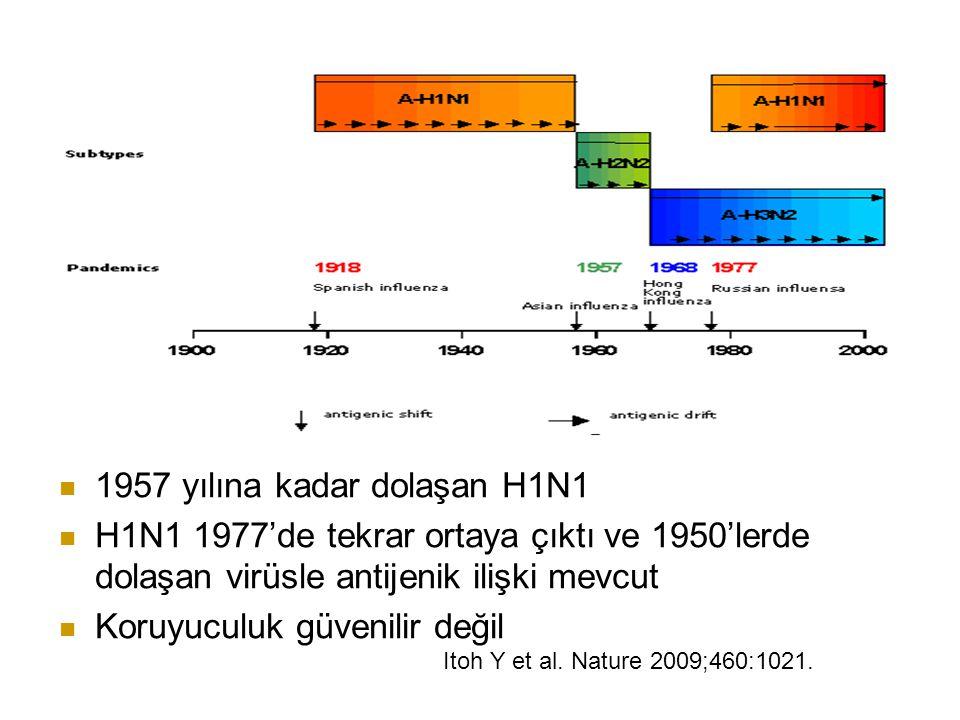 1957 yılına kadar dolaşan H1N1 H1N1 1977'de tekrar ortaya çıktı ve 1950'lerde dolaşan virüsle antijenik ilişki mevcut Koruyuculuk güvenilir değil Itoh