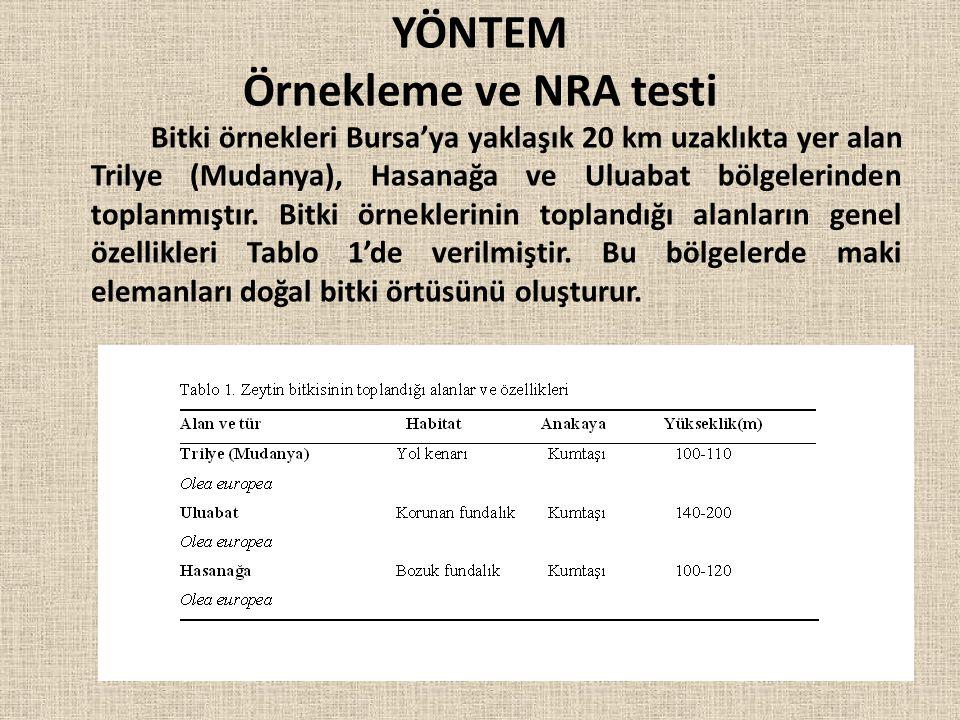YÖNTEM Örnekleme ve NRA testi Bitki örnekleri Bursa'ya yaklaşık 20 km uzaklıkta yer alan Trilye (Mudanya), Hasanağa ve Uluabat bölgelerinden toplanmış