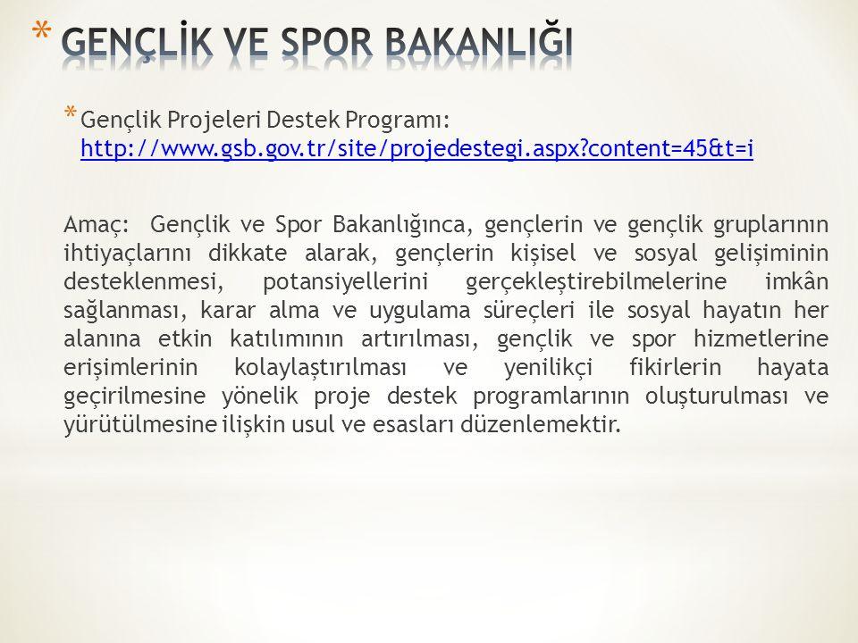 * Gençlik Projeleri Destek Programı: http://www.gsb.gov.tr/site/projedestegi.aspx?content=45&t=i http://www.gsb.gov.tr/site/projedestegi.aspx?content=45&t=i Amaç: Gençlik ve Spor Bakanlığınca, gençlerin ve gençlik gruplarının ihtiyaçlarını dikkate alarak, gençlerin kişisel ve sosyal gelişiminin desteklenmesi, potansiyellerini gerçekleştirebilmelerine imkân sağlanması, karar alma ve uygulama süreçleri ile sosyal hayatın her alanına etkin katılımının artırılması, gençlik ve spor hizmetlerine erişimlerinin kolaylaştırılması ve yenilikçi fikirlerin hayata geçirilmesine yönelik proje destek programlarının oluşturulması ve yürütülmesine ilişkin usul ve esasları düzenlemektir.