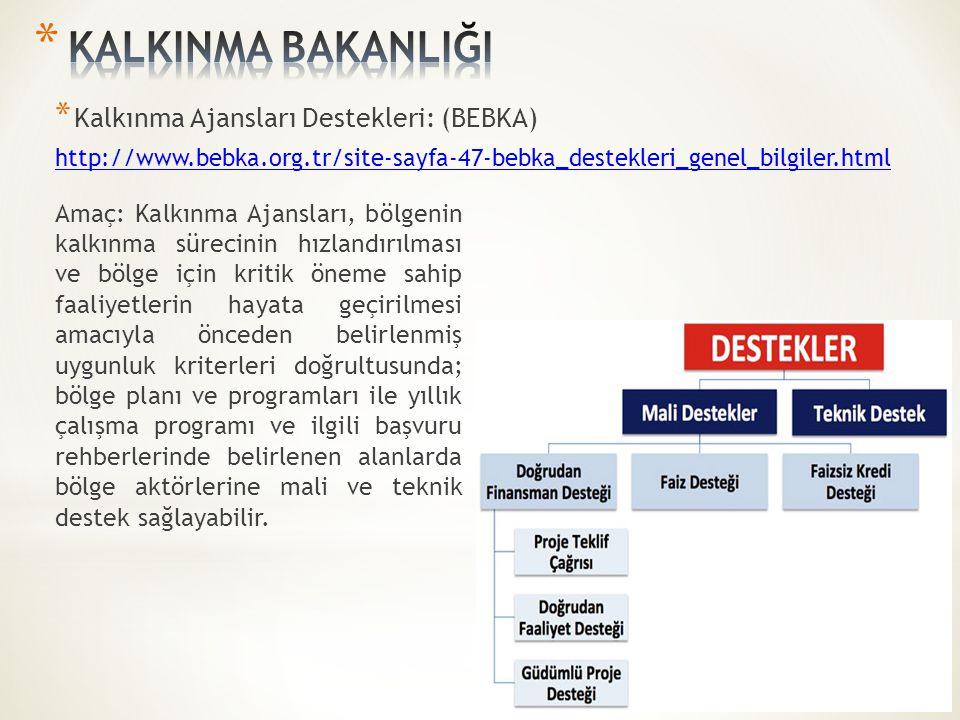 * Kalkınma Ajansları Destekleri: (BEBKA) http://www.bebka.org.tr/site-sayfa-47-bebka_destekleri_genel_bilgiler.html Amaç: Kalkınma Ajansları, bölgenin